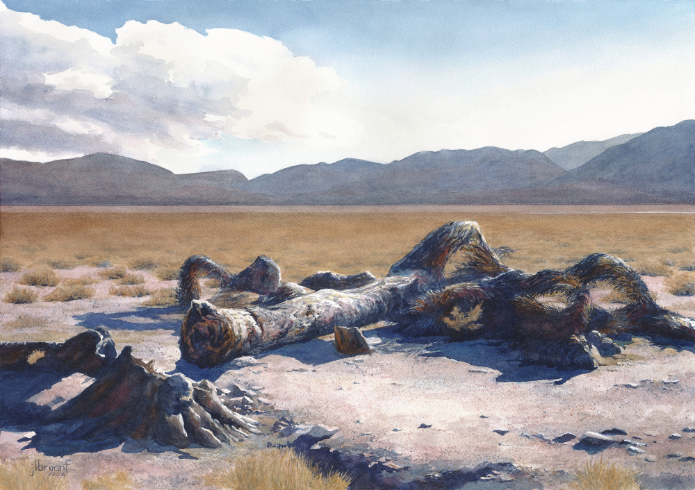 "Demise of an Icon, The U2 Joshua Tree, outside Death Valley Nat'l Park  watercolor : 14 x 20"" : print $175 : original available"
