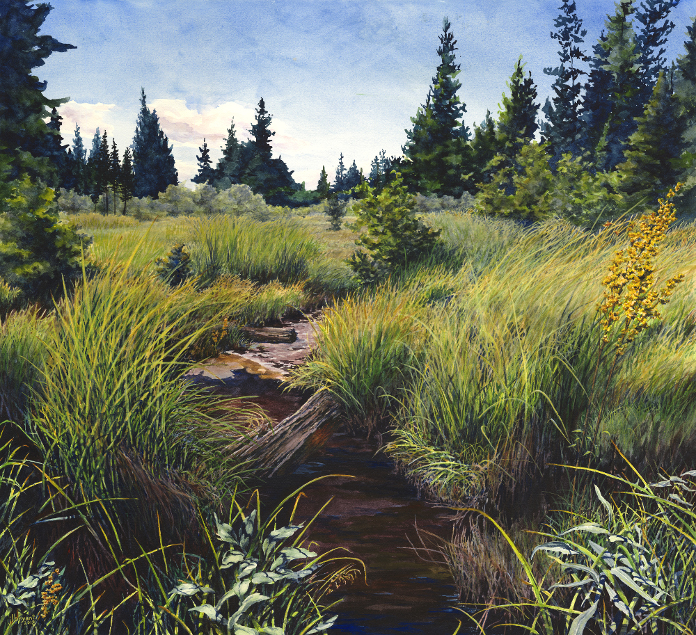 "Little Death Creek  watercolor : 21 x 23"" : print $250 : original sold"