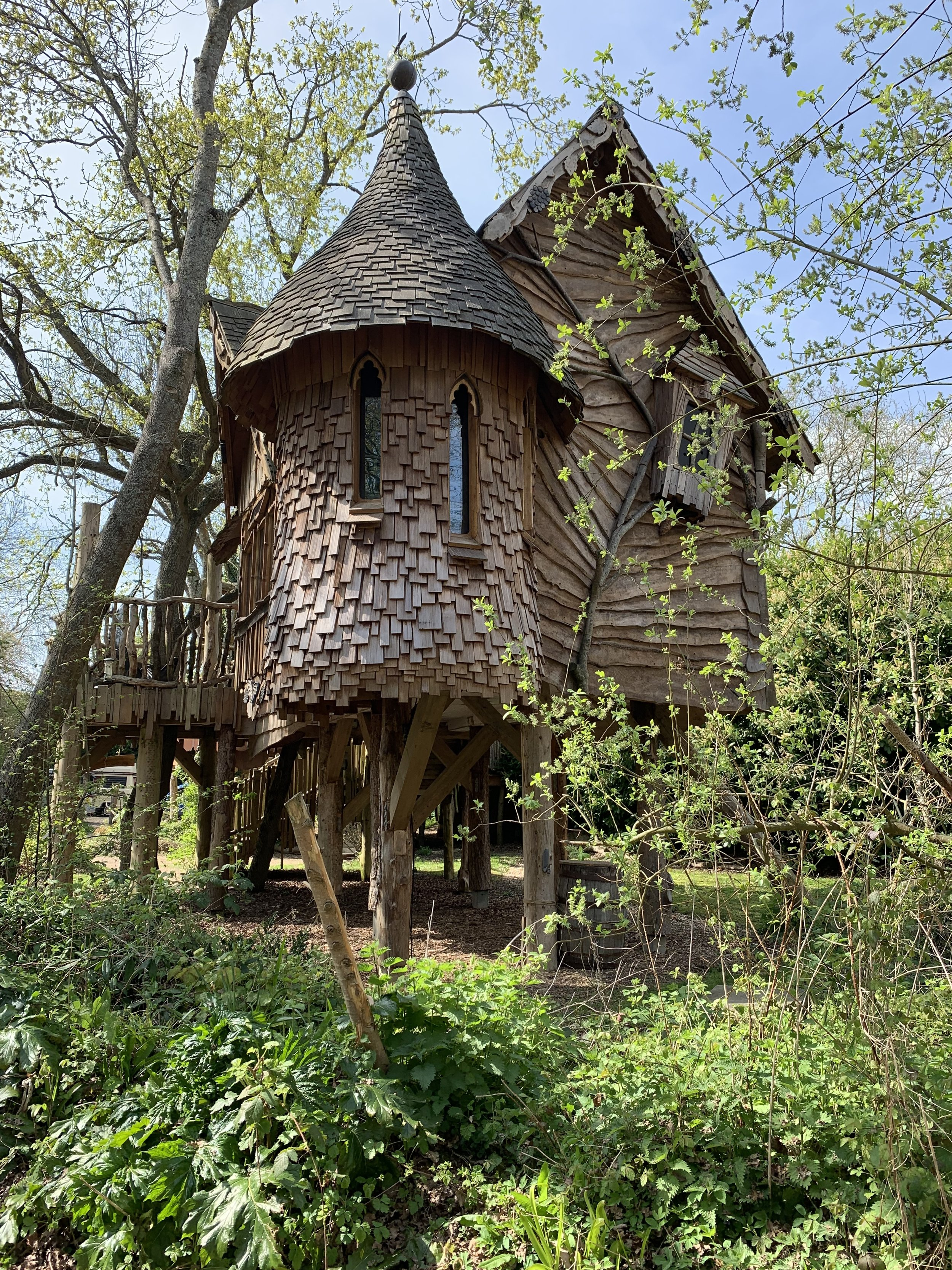 The best treehouse I've ever seen! Blackberry Woods, Sussex