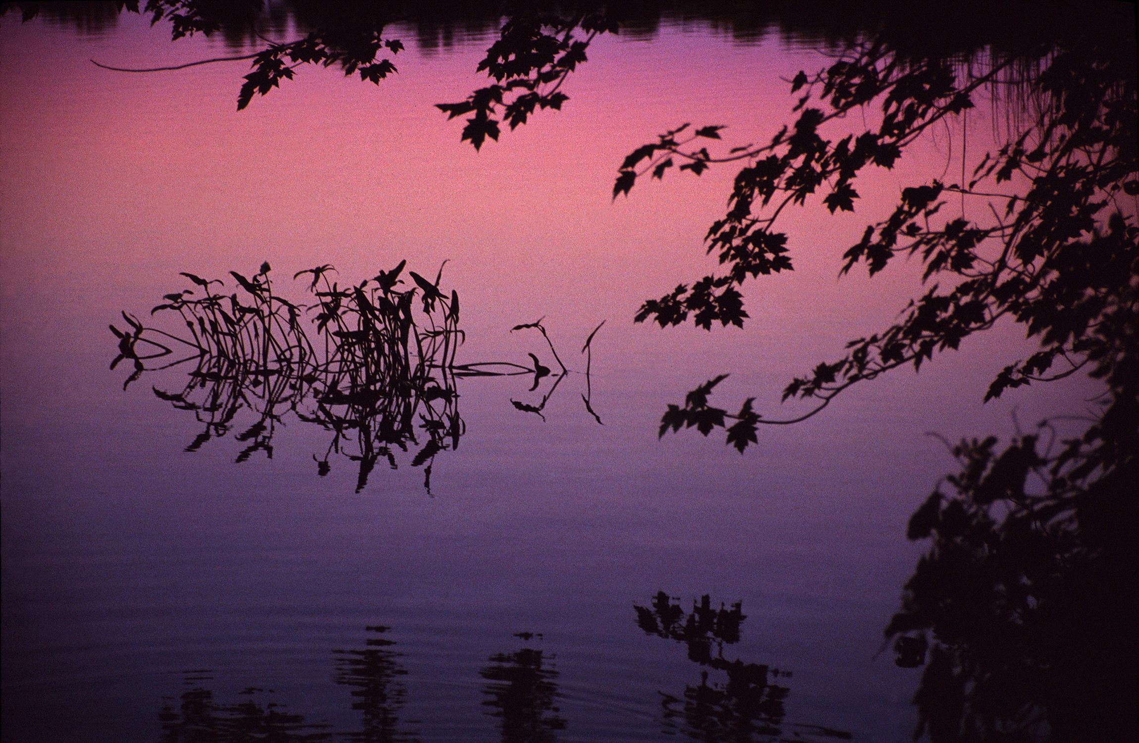 Arrowheads at Sunrise, Michigan