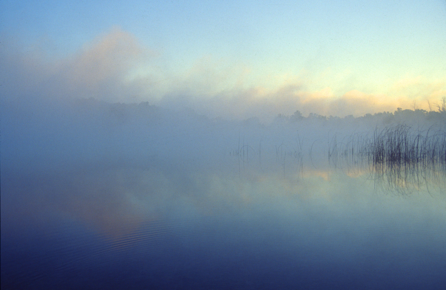 Sunrise and Fog, Michigan