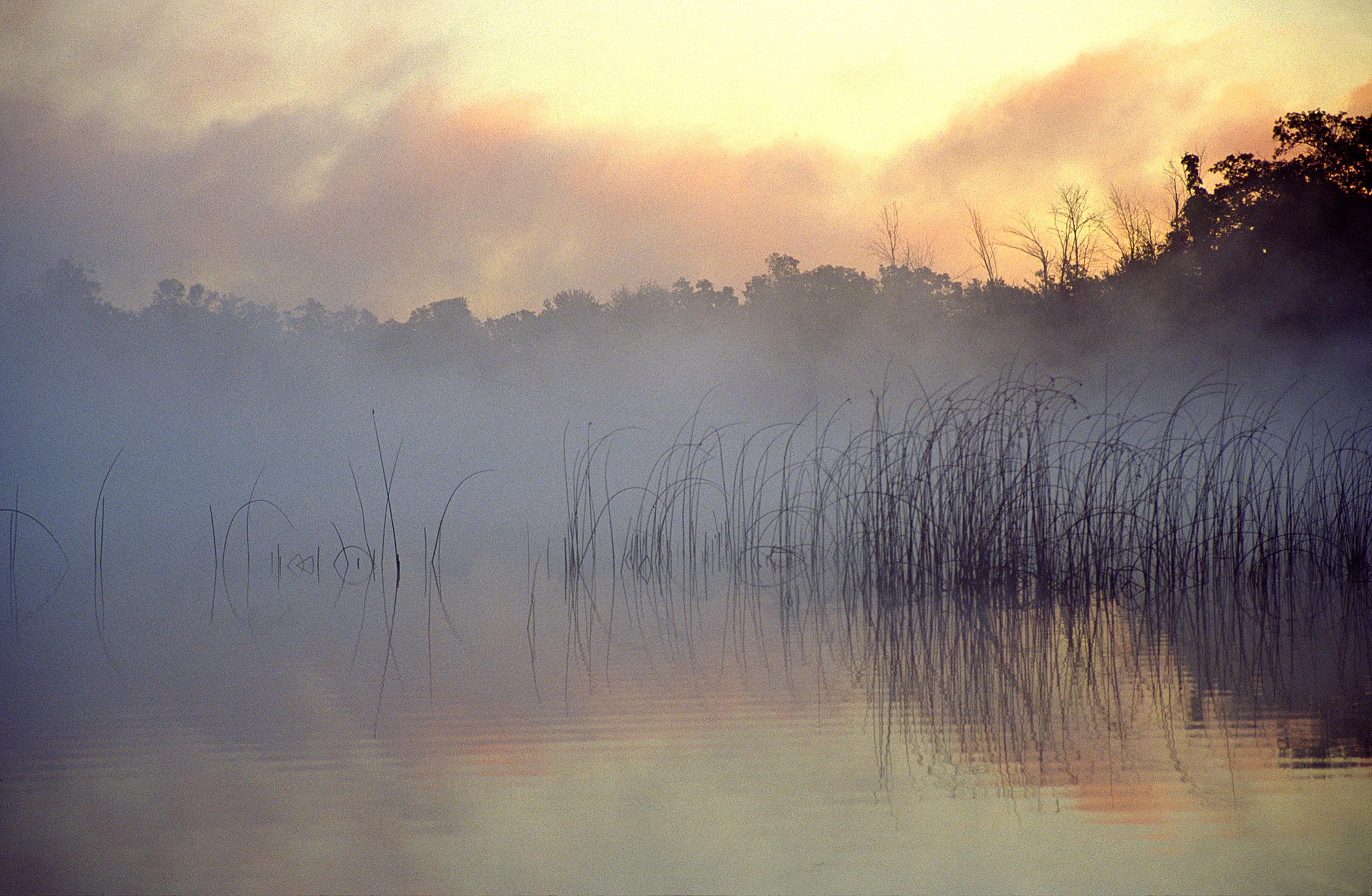 Sunrise and Fog #2, Michigan