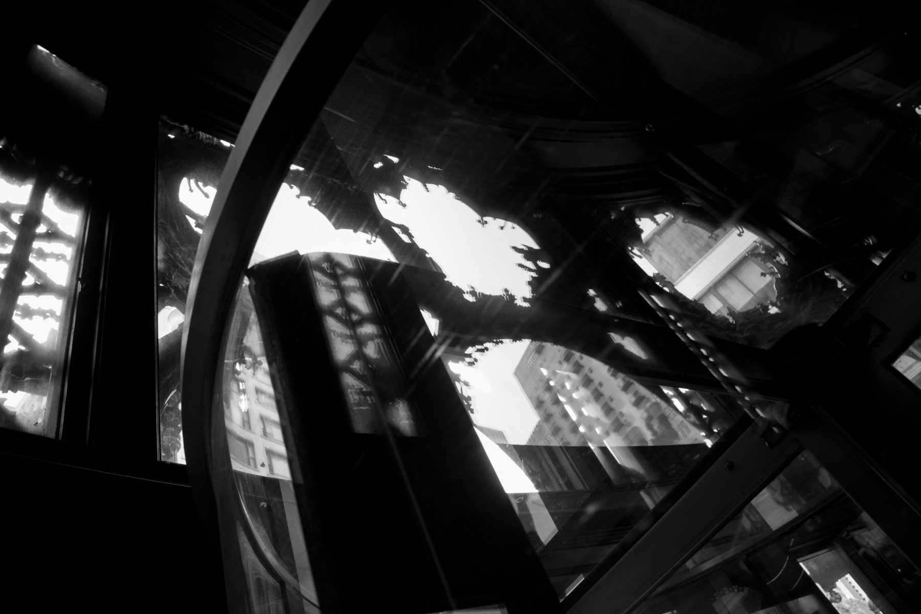 PhotosforVideo (1 of 8).jpg
