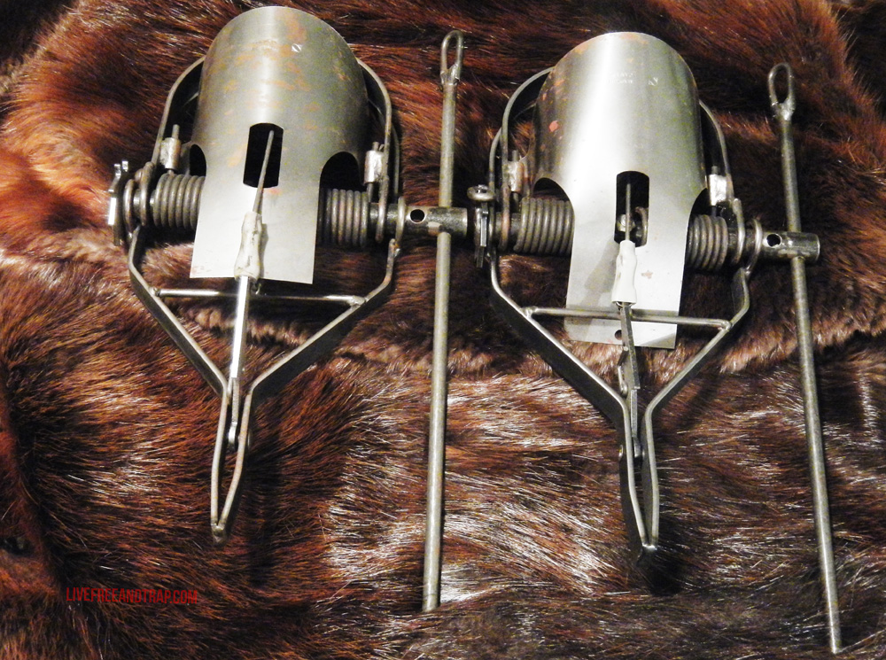 Identical pair of Bionic Killer traps from the author's personal collection