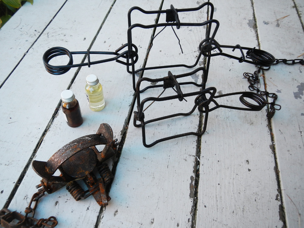 The common tools of the muskrat trapper.