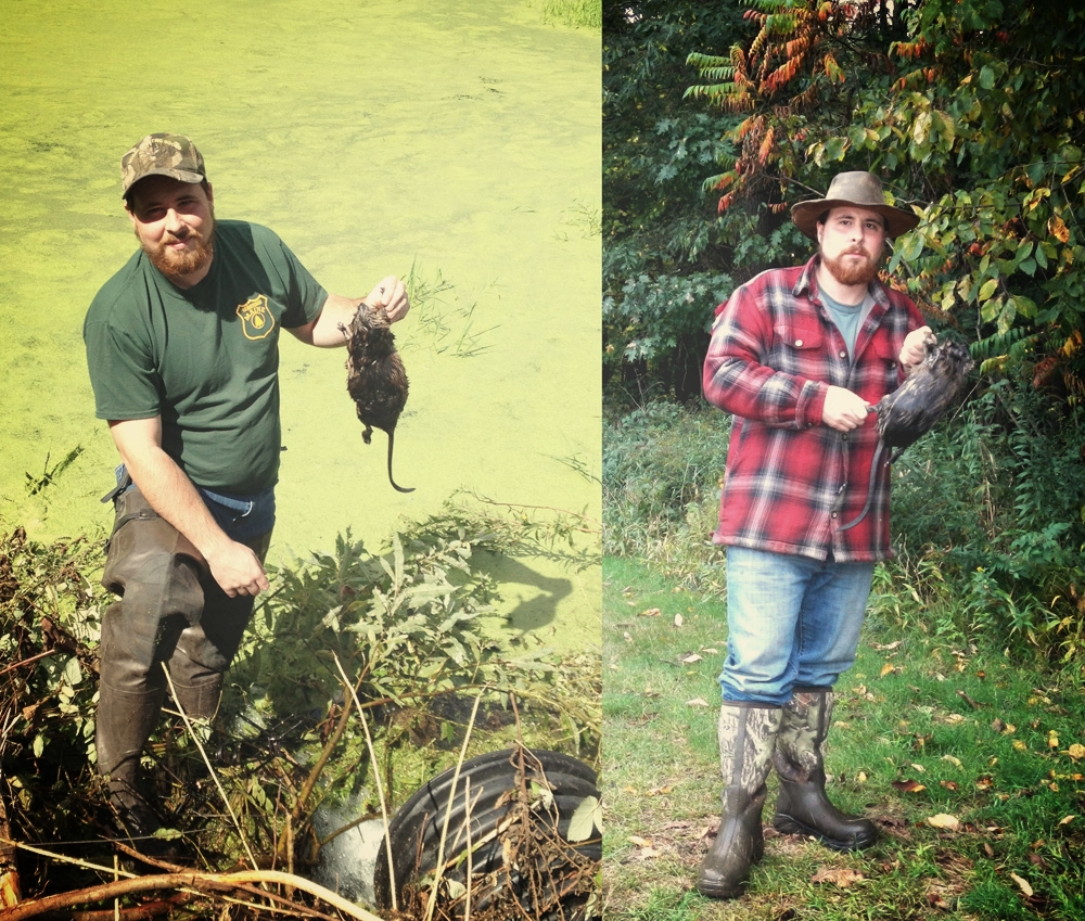 The author with a couple muskrat catches around a man-made pond.