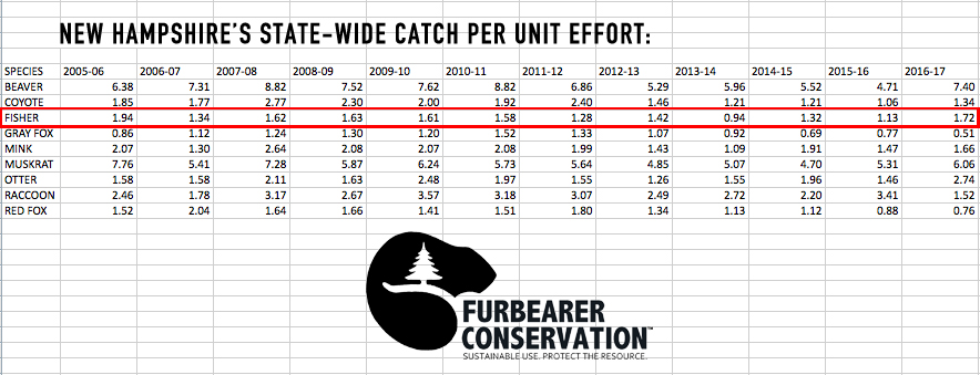 (Table 1) With data furnished from NH Fish and Game, the CPUE totals for furbearing species are laid out from seasons 2005 to 2017. Note the steady continuance of the fisher's year to year CPUE.