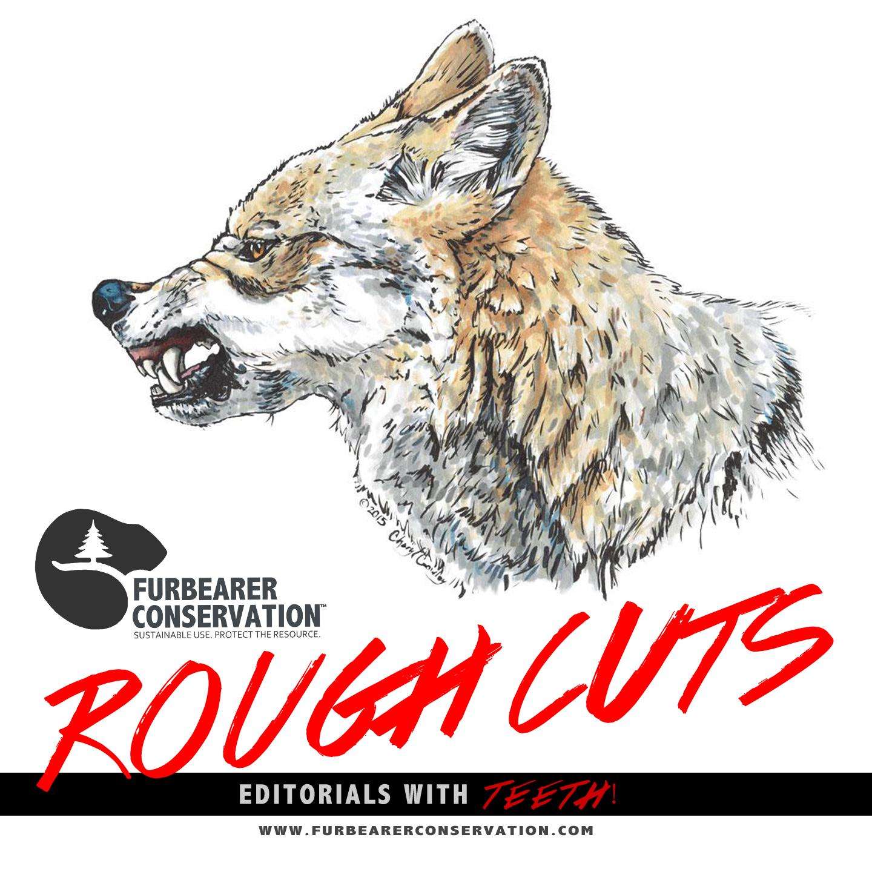 (Wolf Illustration | Cheryl Crowley – CC BY-NC 4.0 License)