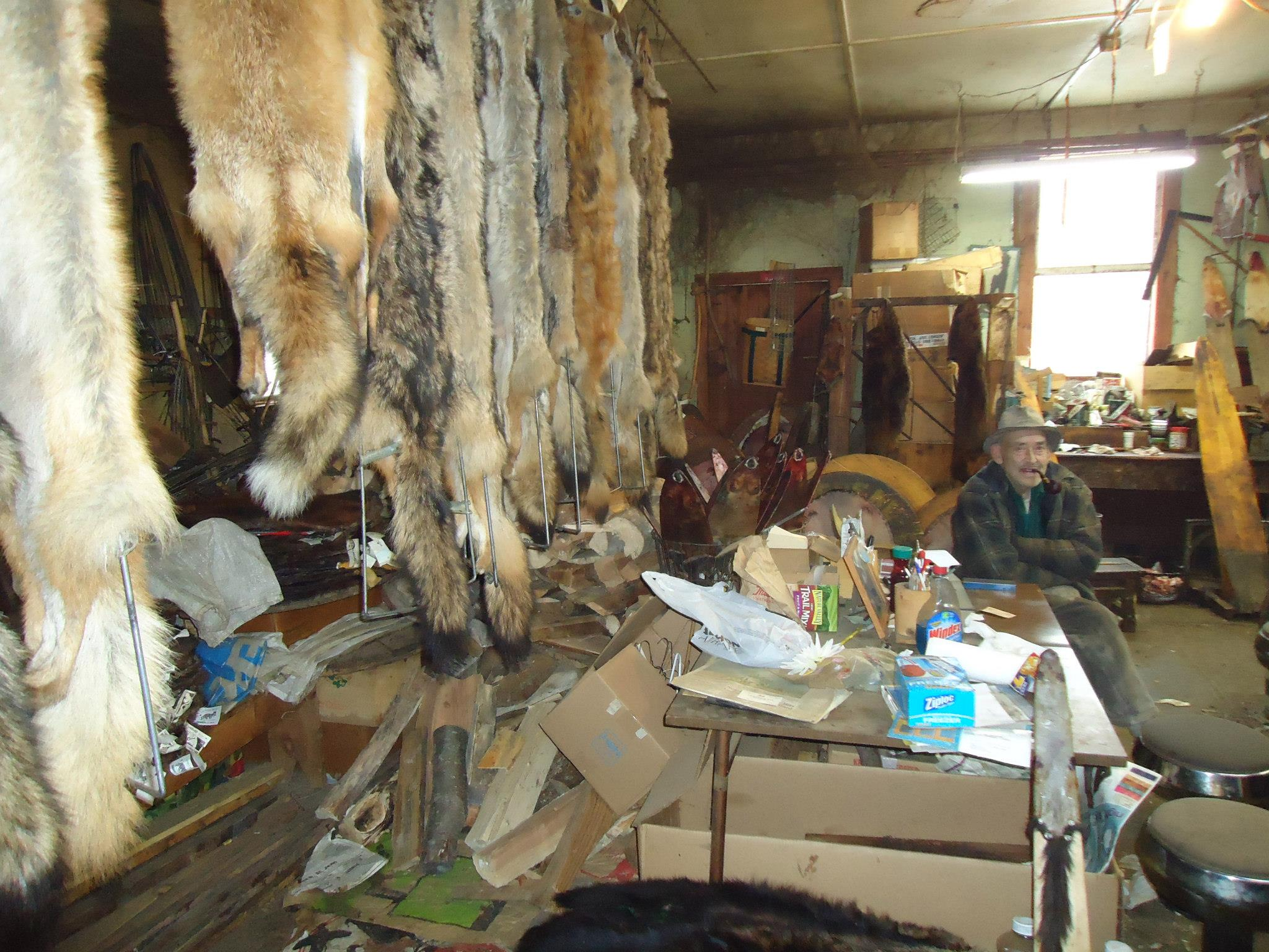 Harris sits in his shop with a collection of put-up fur. (Photo |  J. Leibrandt )