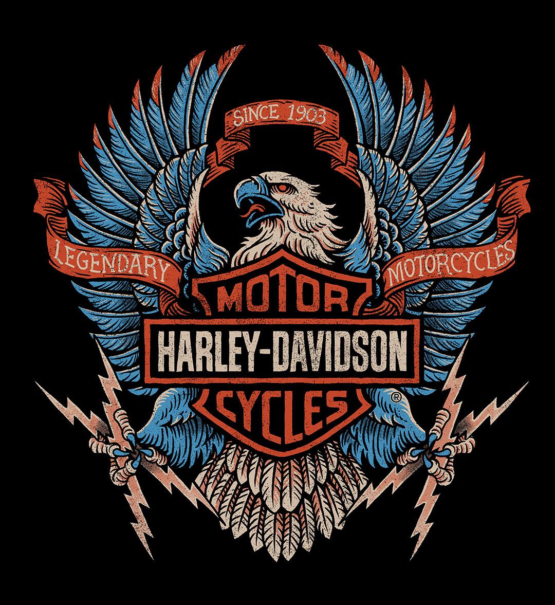 Harley Davidson Strawcastle