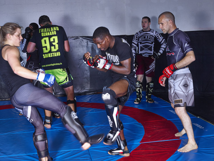 Mixed Martial Arts Paris Club Free Fight Academy Seances Tous Niveaux.jpg