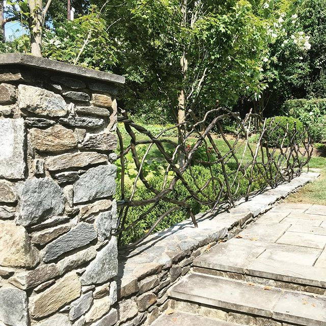 Our blackened stainless steel garden partition blends into this beautiful backyard in Potomac. A good late-summer build buttoned up last week #installation #stainlesssteel