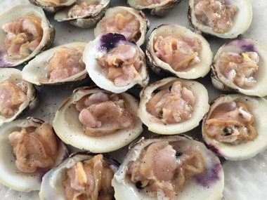 Clams on the half shell