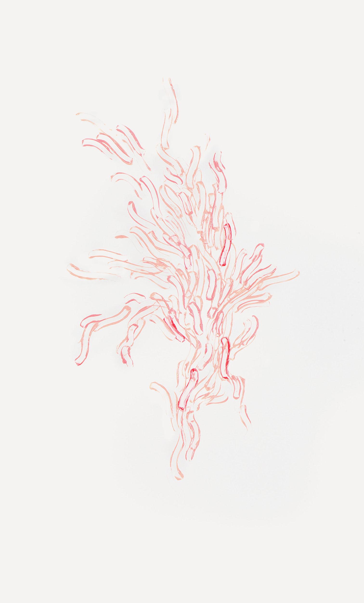 the lingering (detail)