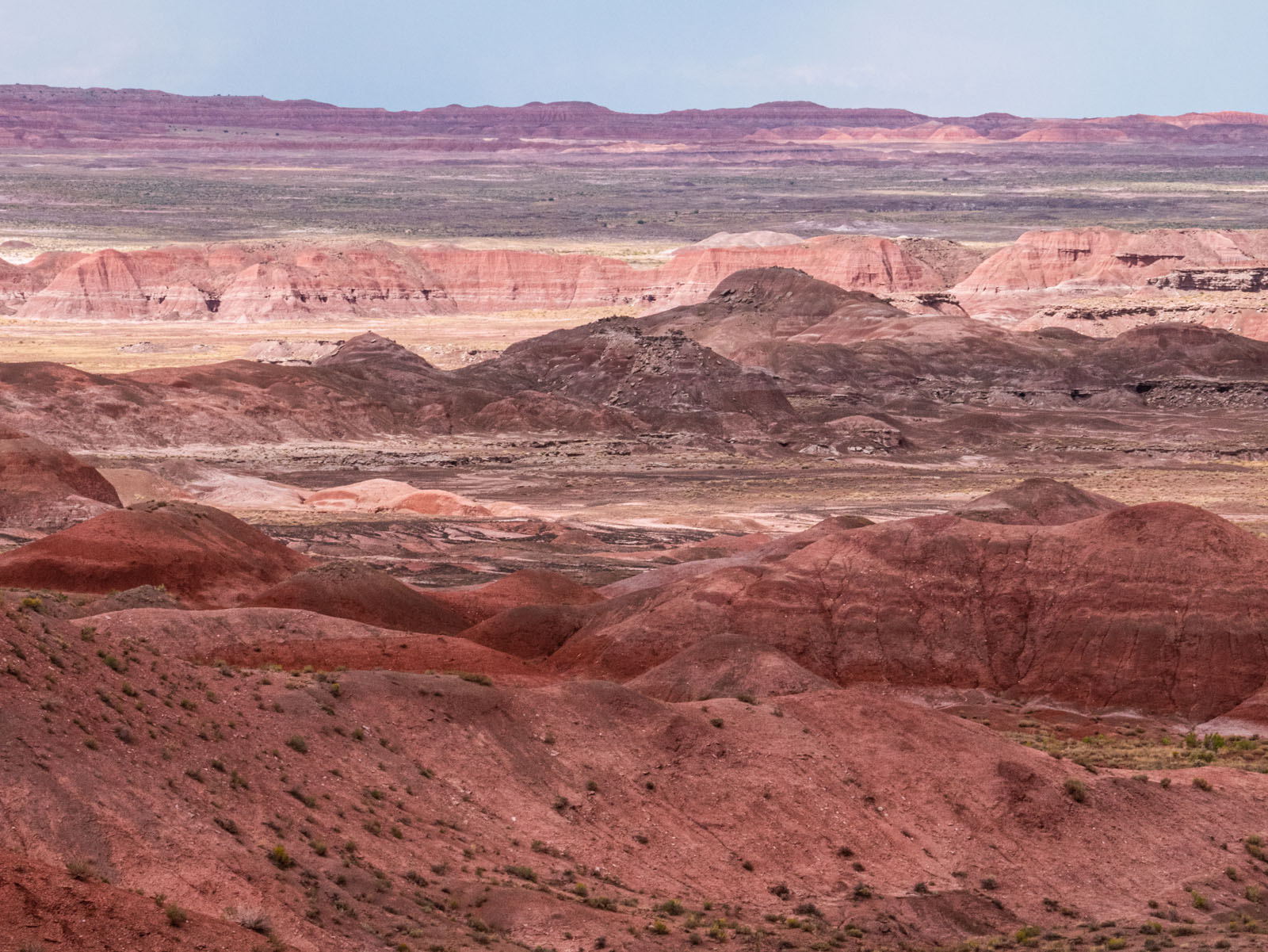 CO_Vacationmoon_PaintedDesert-1010386.jpg