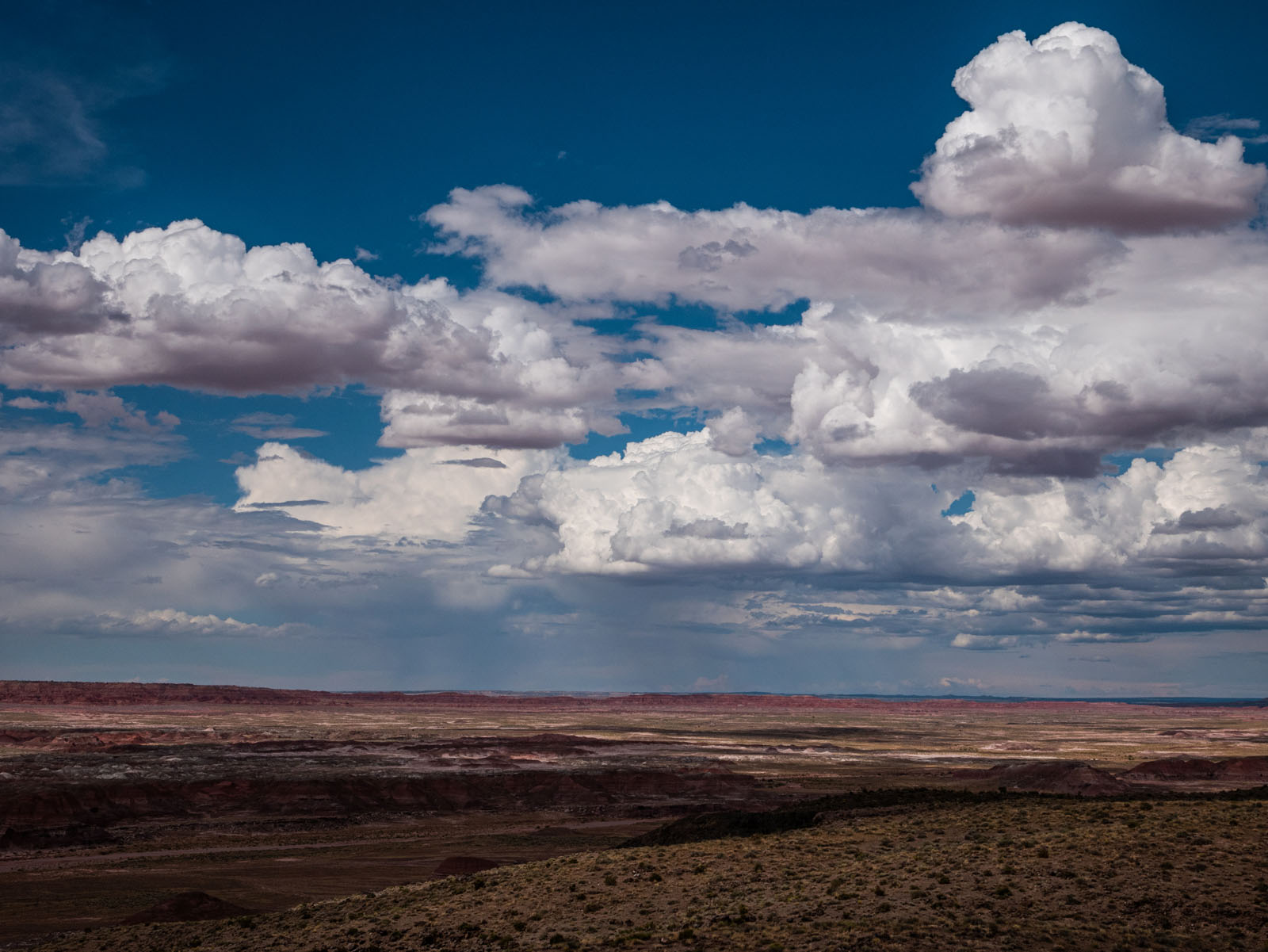 CO_Vacationmoon_PaintedDesert-1010458.jpg