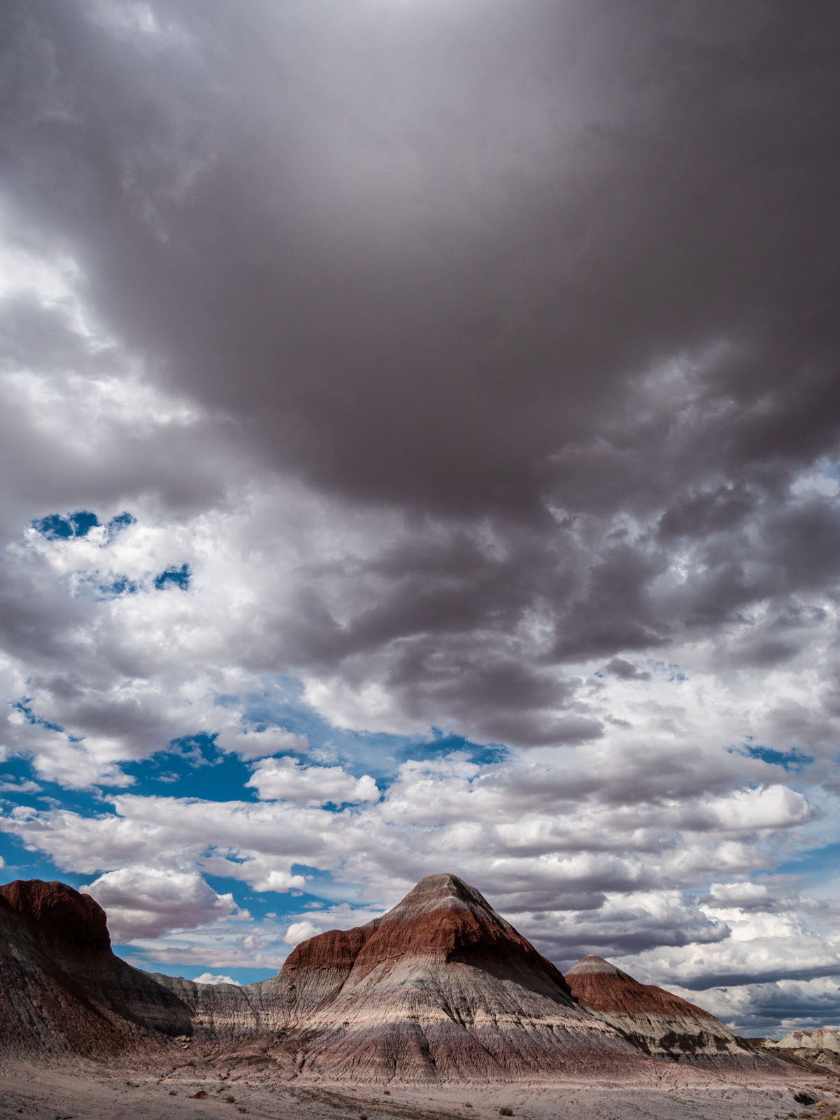 CO_Vacationmoon_PaintedDesert-1010485.jpg