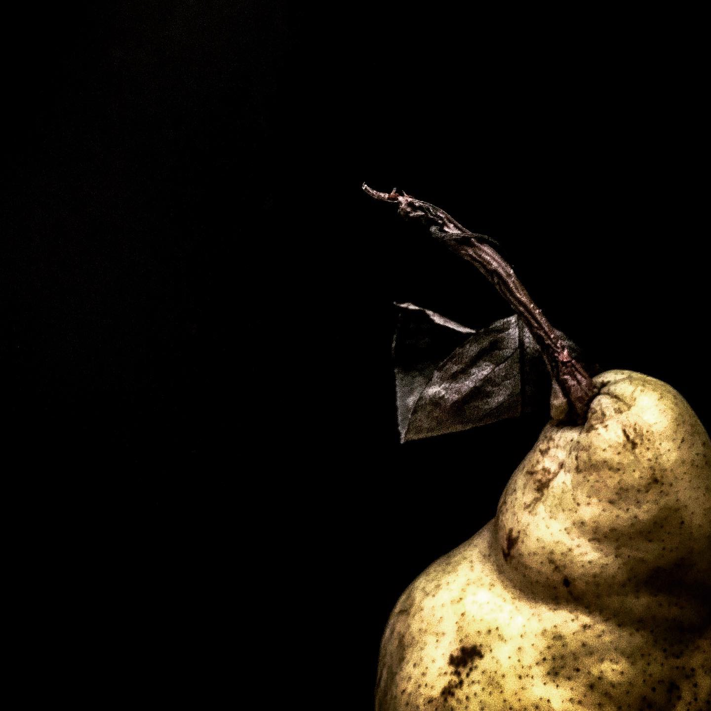 PEAR ON METAL CLOSE UP.JPG