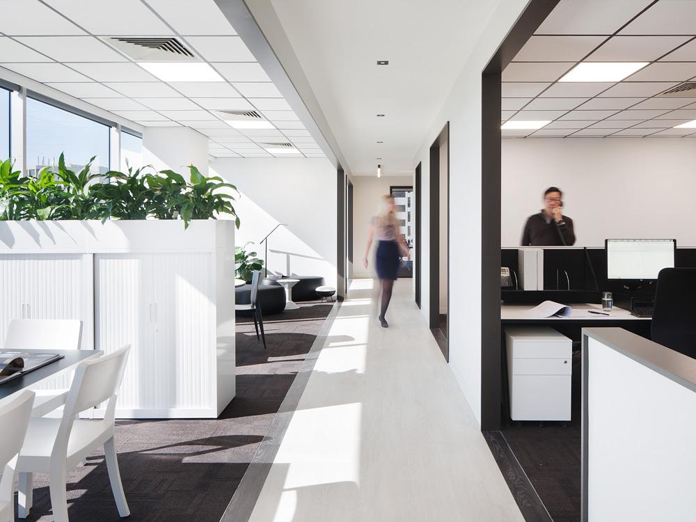 Molecule_Interior_Workplace_Melbourne_CEL Australia_3.jpg