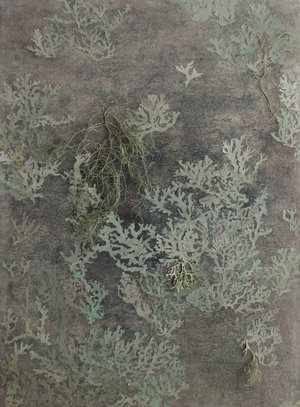 Chunbo_Zhang-9-2_Tree_Bark_with_Moss_2_13.5_x_18.5_inch_Mixed_media_on_rice_paper__2016.jpg