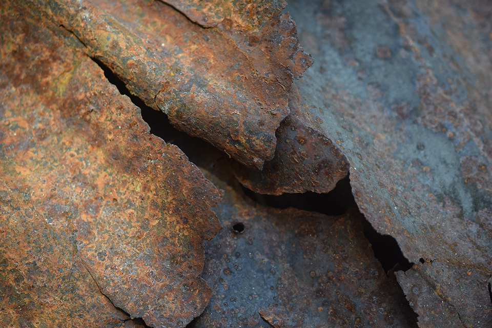 "Alpine Rust   Photograph  by Dan Lythcott-Haims  Size: 30 x 20""   $500.00"
