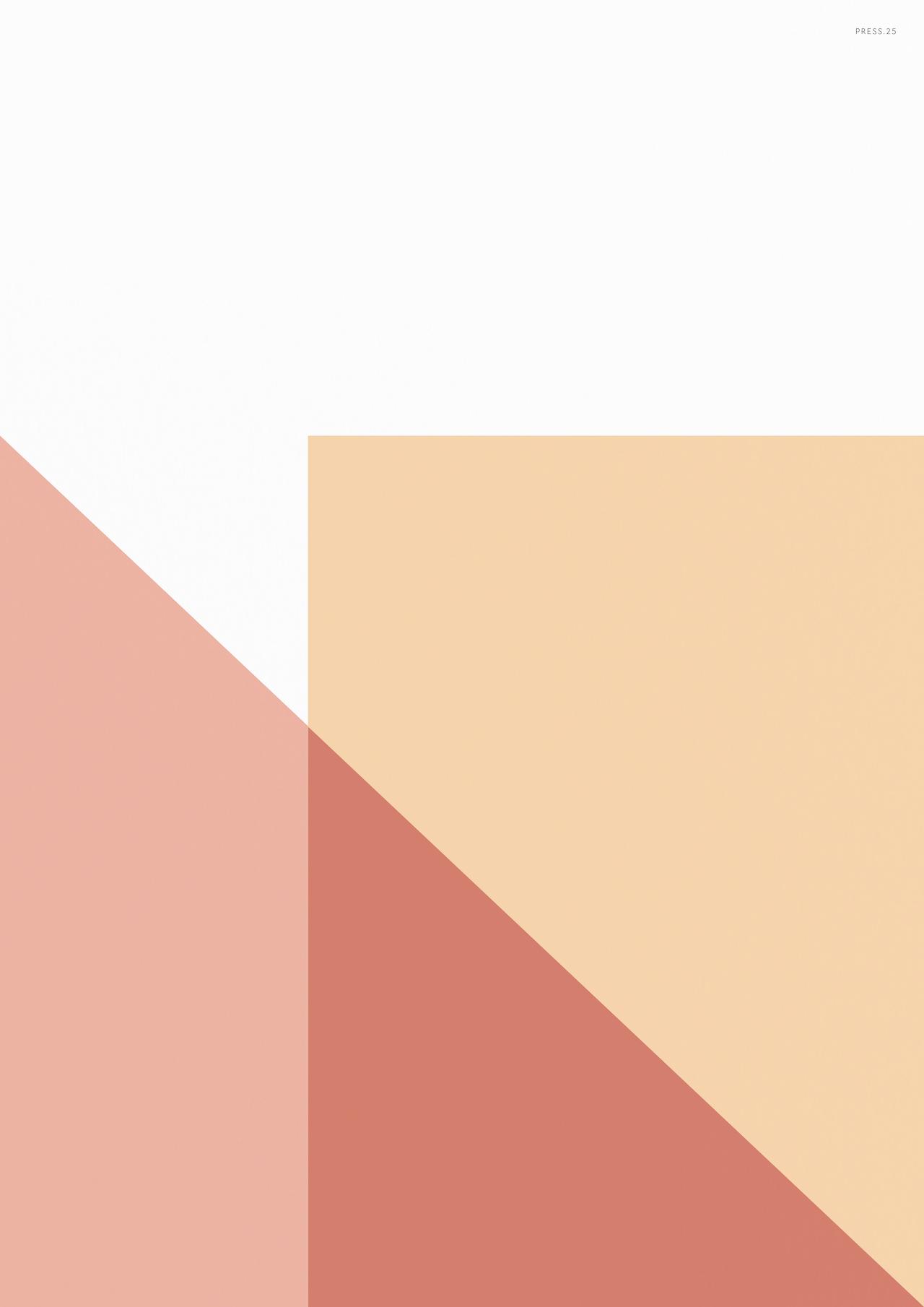 PRESS.25 (Geometric Print) (2016)  by  Liam Roberts