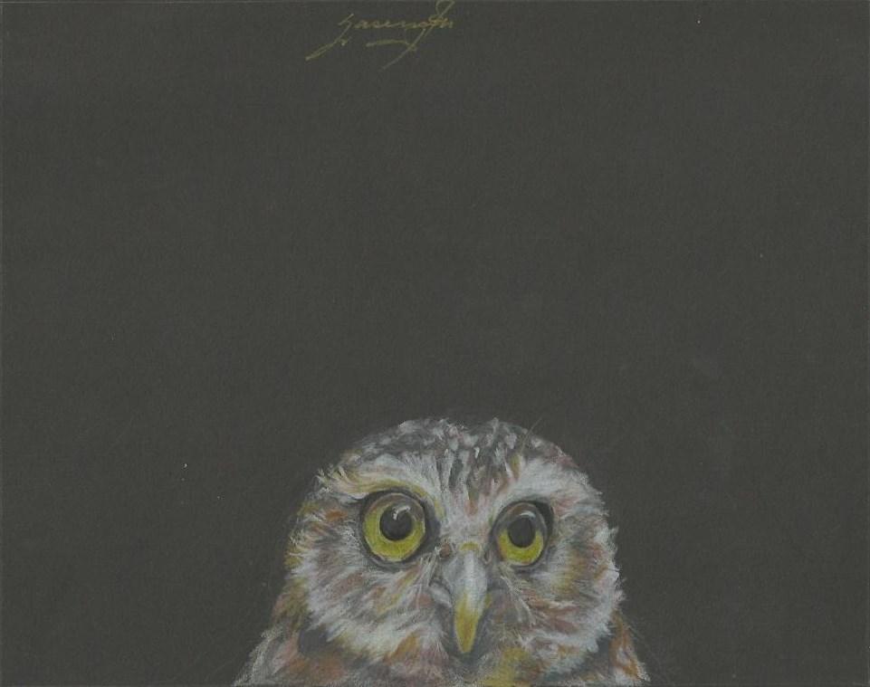 "Owl 3, Wide-eyed, Light yellow eyes, 7.5 x 9.5"", $200"
