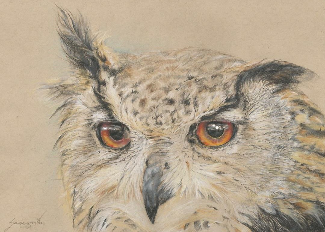 """Owl #7, Soft Ears, 7.75 x 10.75"""", $415"""