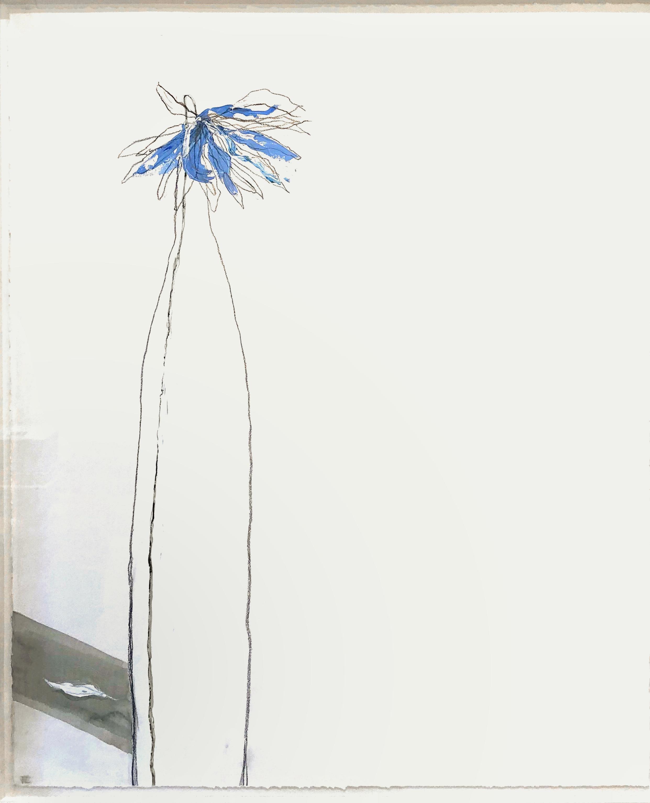 Fiona Chandler  'Still Watercolour Runs Deep' $3995