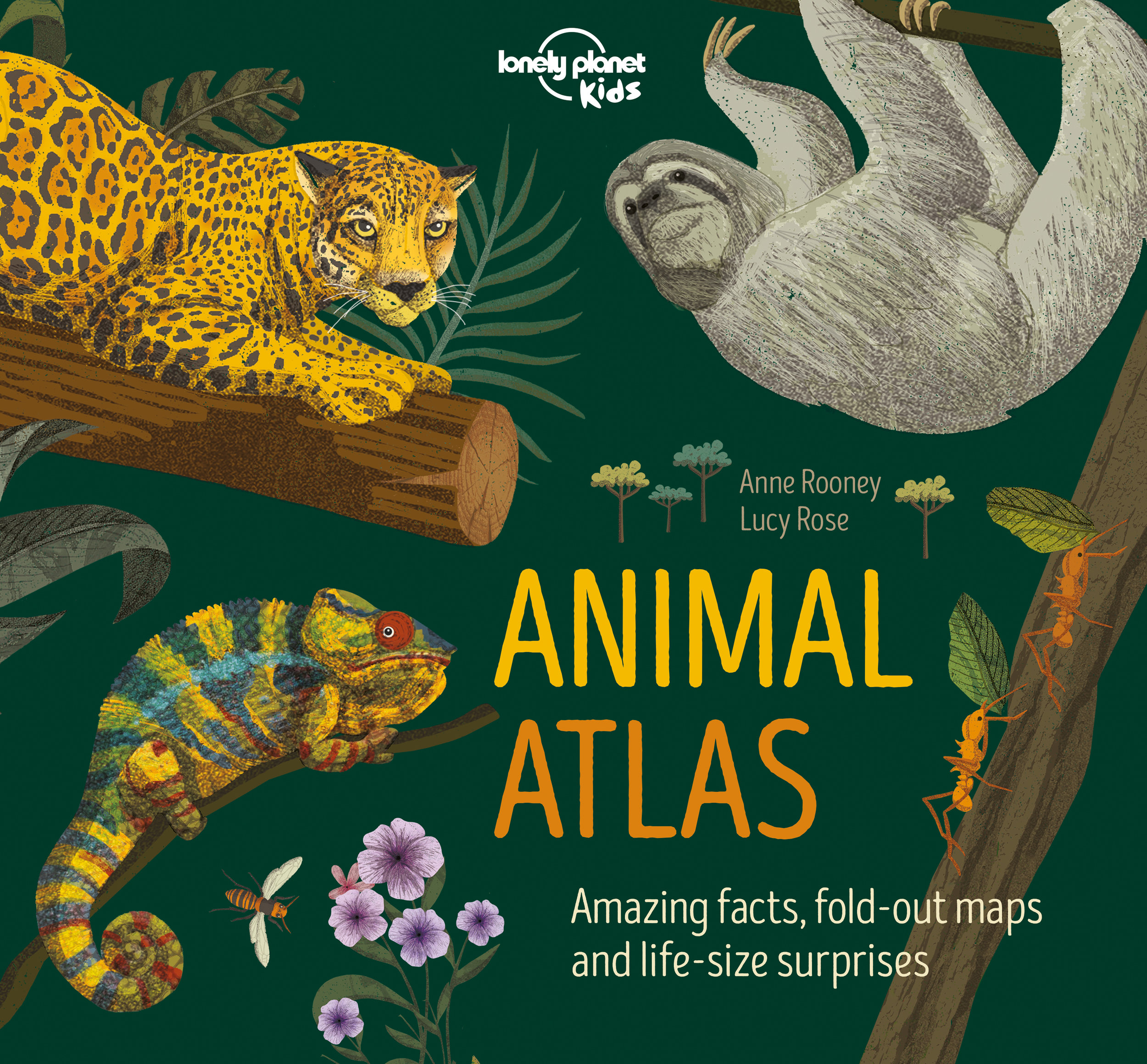 LP kids animal atlas.jpeg