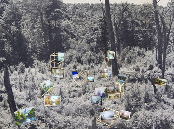 Forestry and Landscape, 2014