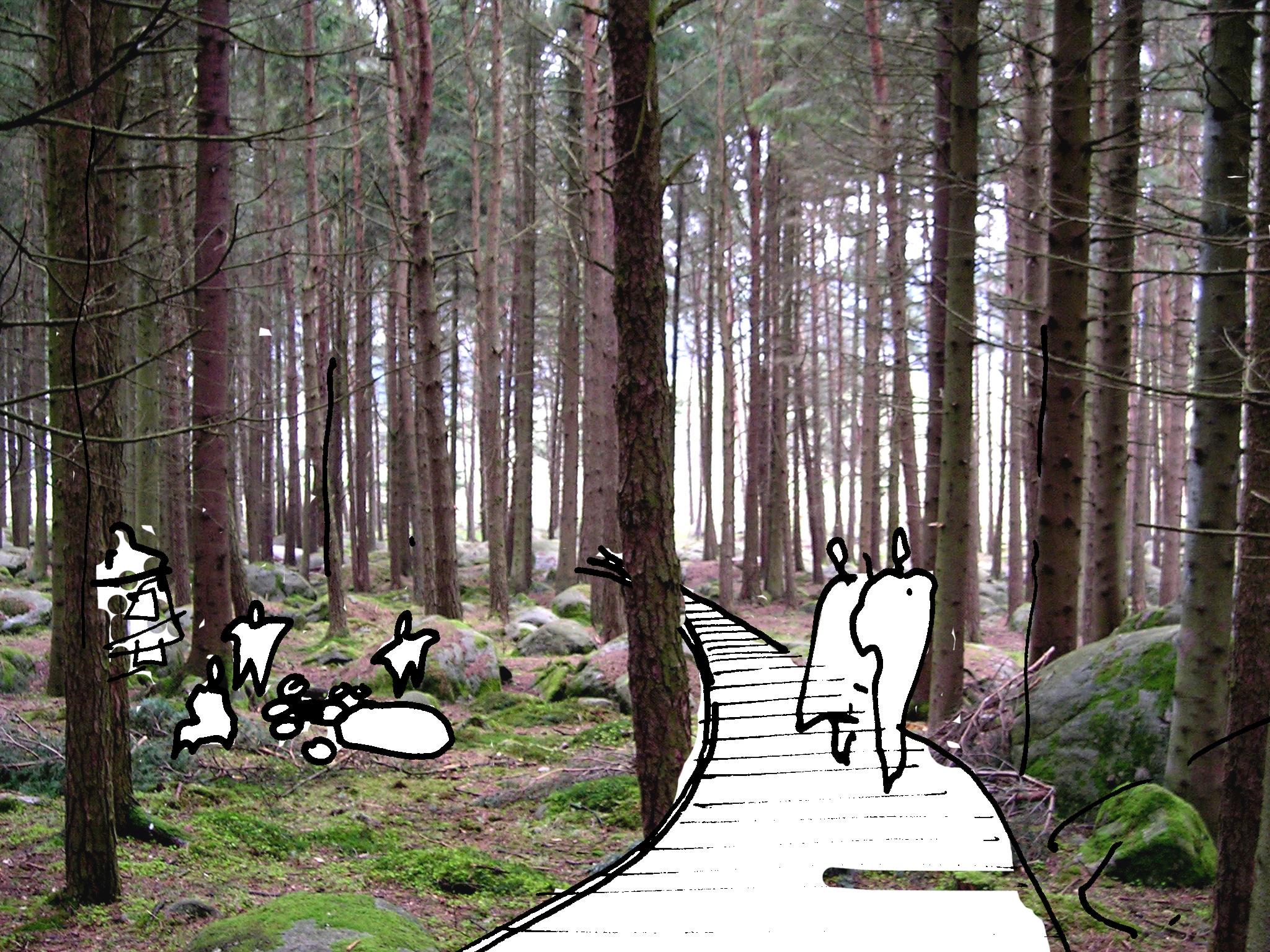 gangvei i skog 02.jpg