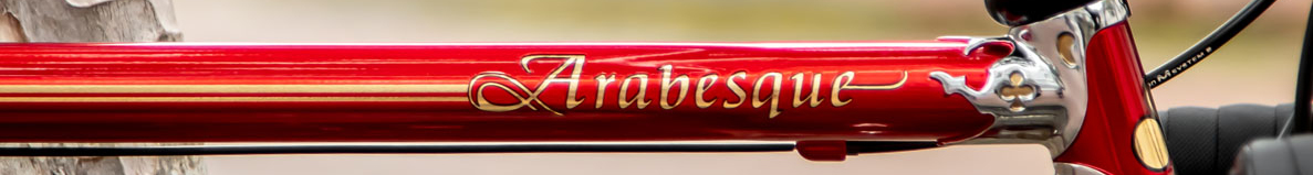 Colnago Arabesque_HL Website Banner.jpg