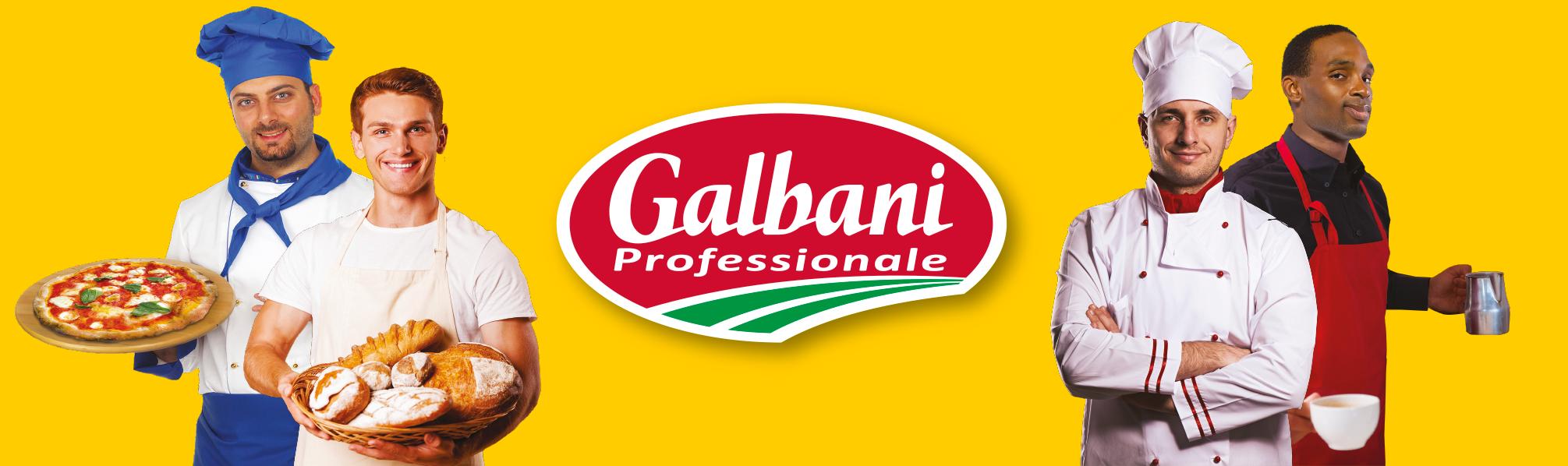 GALBANIPROFESSIONALHEADER.png