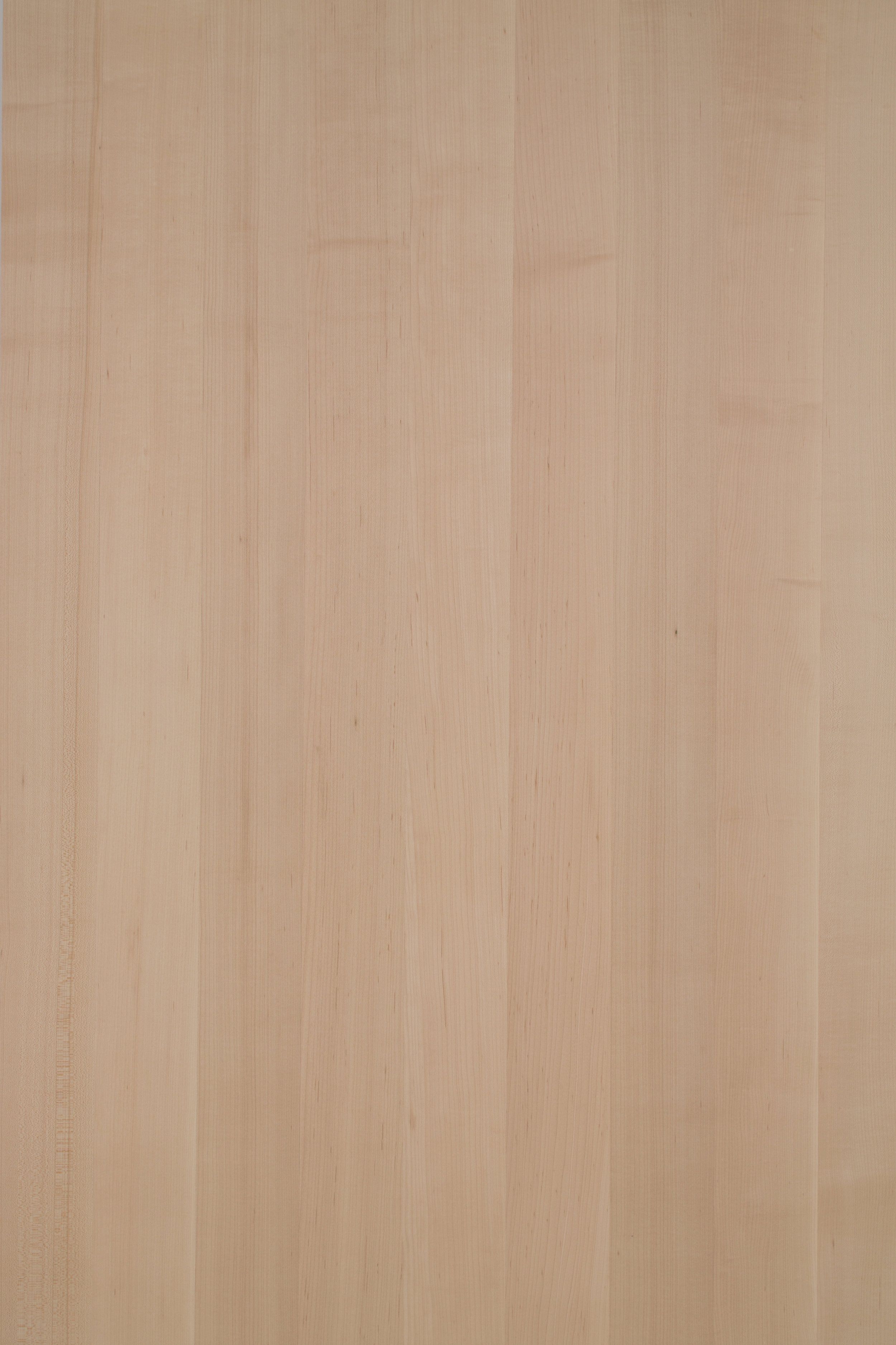 Premium Quarter Sawn Maple