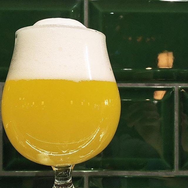 Did you say beer? • • • • • #eugenales #birra #cerveza #bier #biere #cerveja #pivo #beerporn #instabeer #beergeek #craftbeer #beerstagram #piwo #beerlover #øl #instacerveja #beeroftheday #beer #beergram #ilovebeer #cervejadeverdade #craftbrew #beertography #ratebeer #beertime #vienna #igersvienna #ig_vienna #instavienna