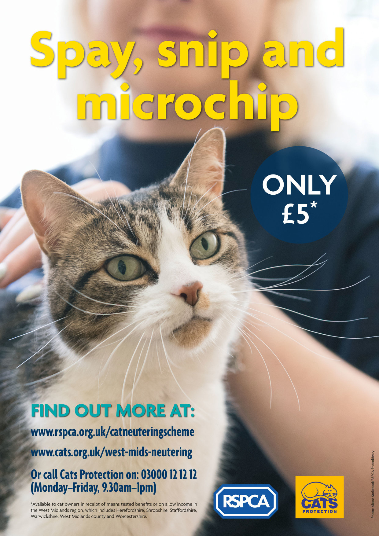 RSPCA and Cats Protection West Midlands Cat Neutering Poster