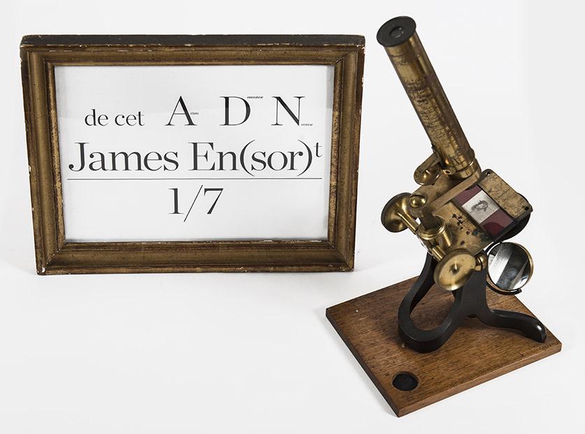 ADN. DE CETTE EXPÉRIENCE… JAMES EN(SOR)T