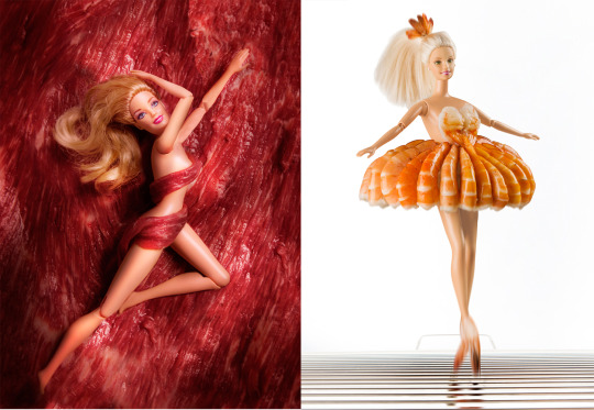 """Steak on the Barbie"" and ""Shrimp on the Barbie"" - photos by    Colin Cooke"