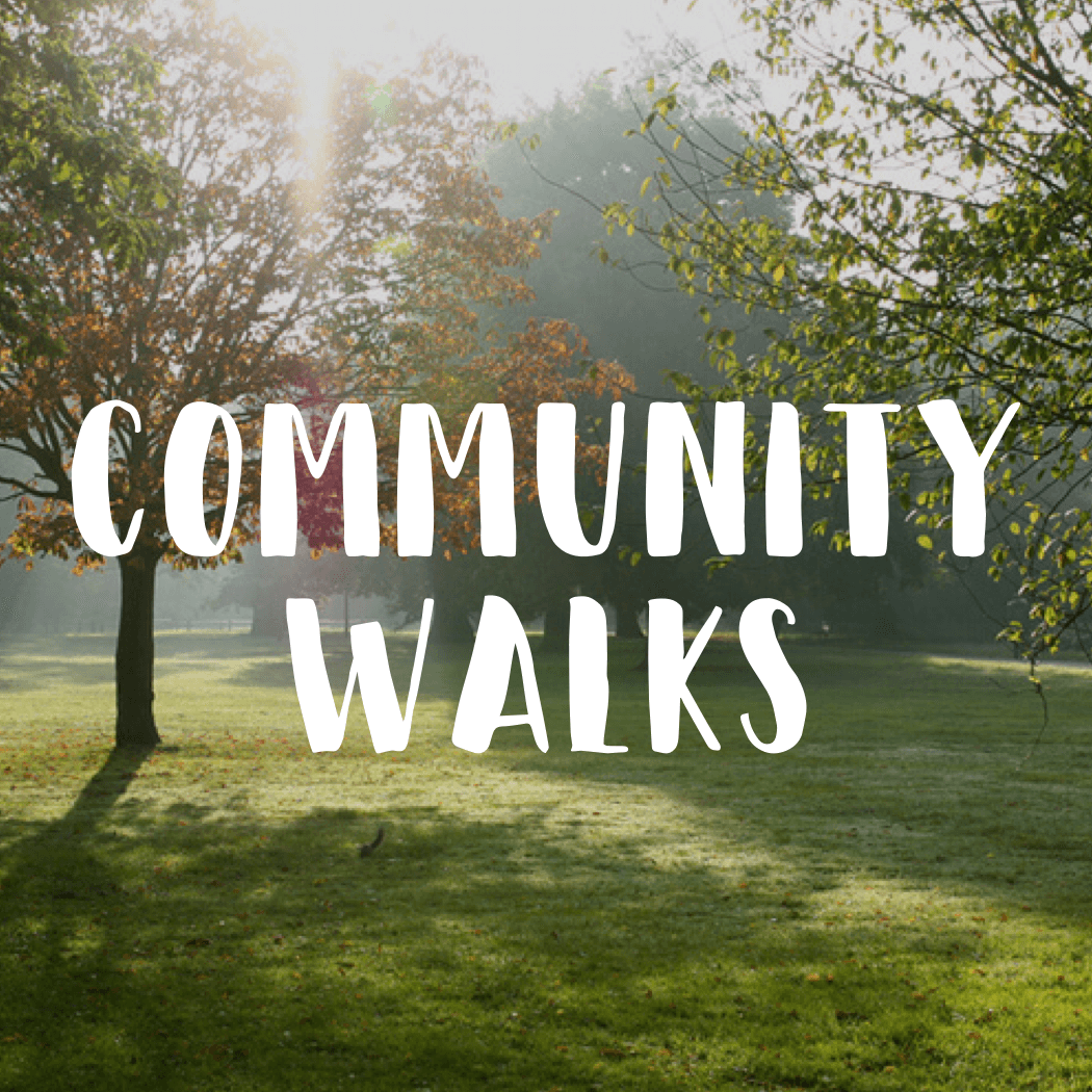 Walk2Connect  is a global social enterprise creating walking programs with the aim to connect people in local communities, engage with the environment and promote health and regular exercise.  Des, our Pastor at BCC, often organises local walks as well as longer day walks. If anyone is interested in joining him, please contact the church office.