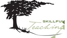 Logo for Skillful Teaching