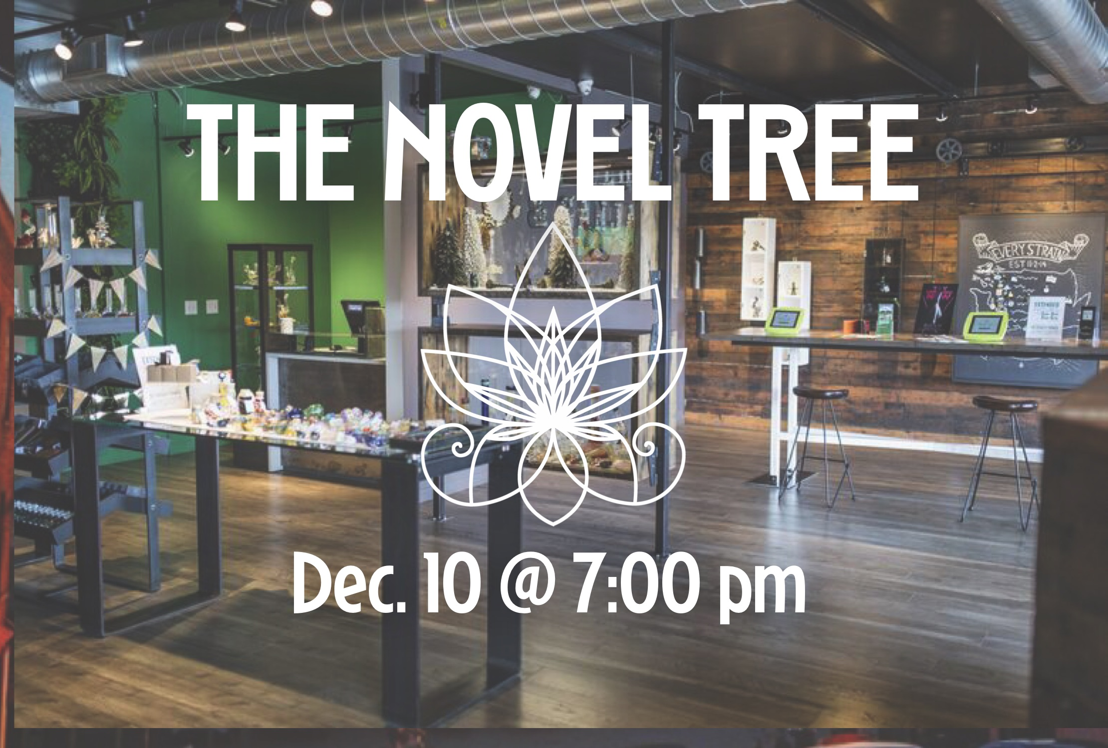 The beautiful dispensary and art gallery of The Novel Tree.