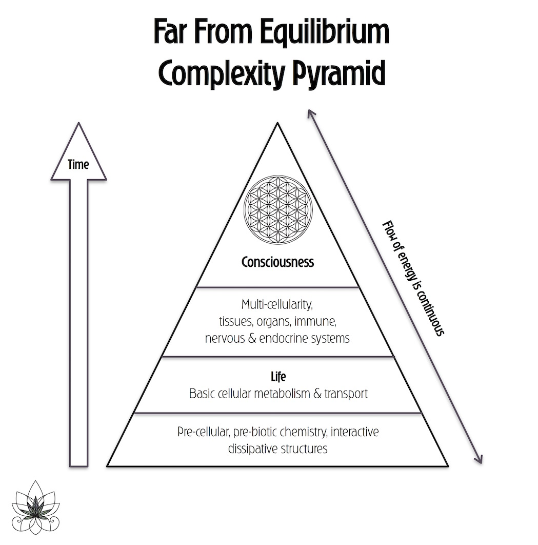 Far From Equilibrium Complexity Pyramid | Marijuasana | Yoga Is The New Jazz.jpg