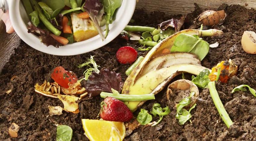 El compostaje es una de las soluciones más eficientes y fáciles al problema del calentamiento global. Fotografía cortesía: Epicentre.