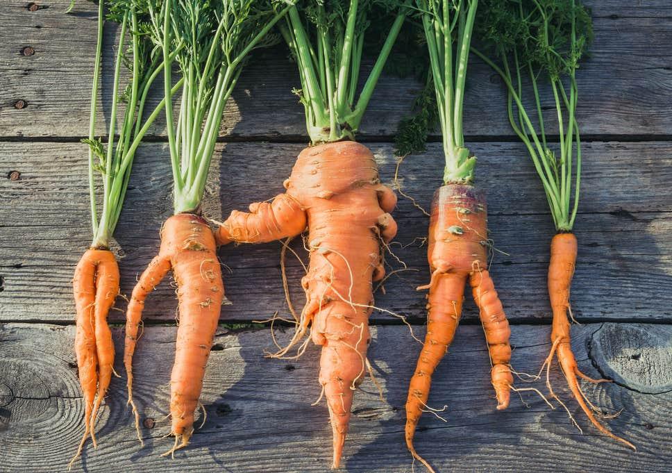 Zanahorias de formas diferentes