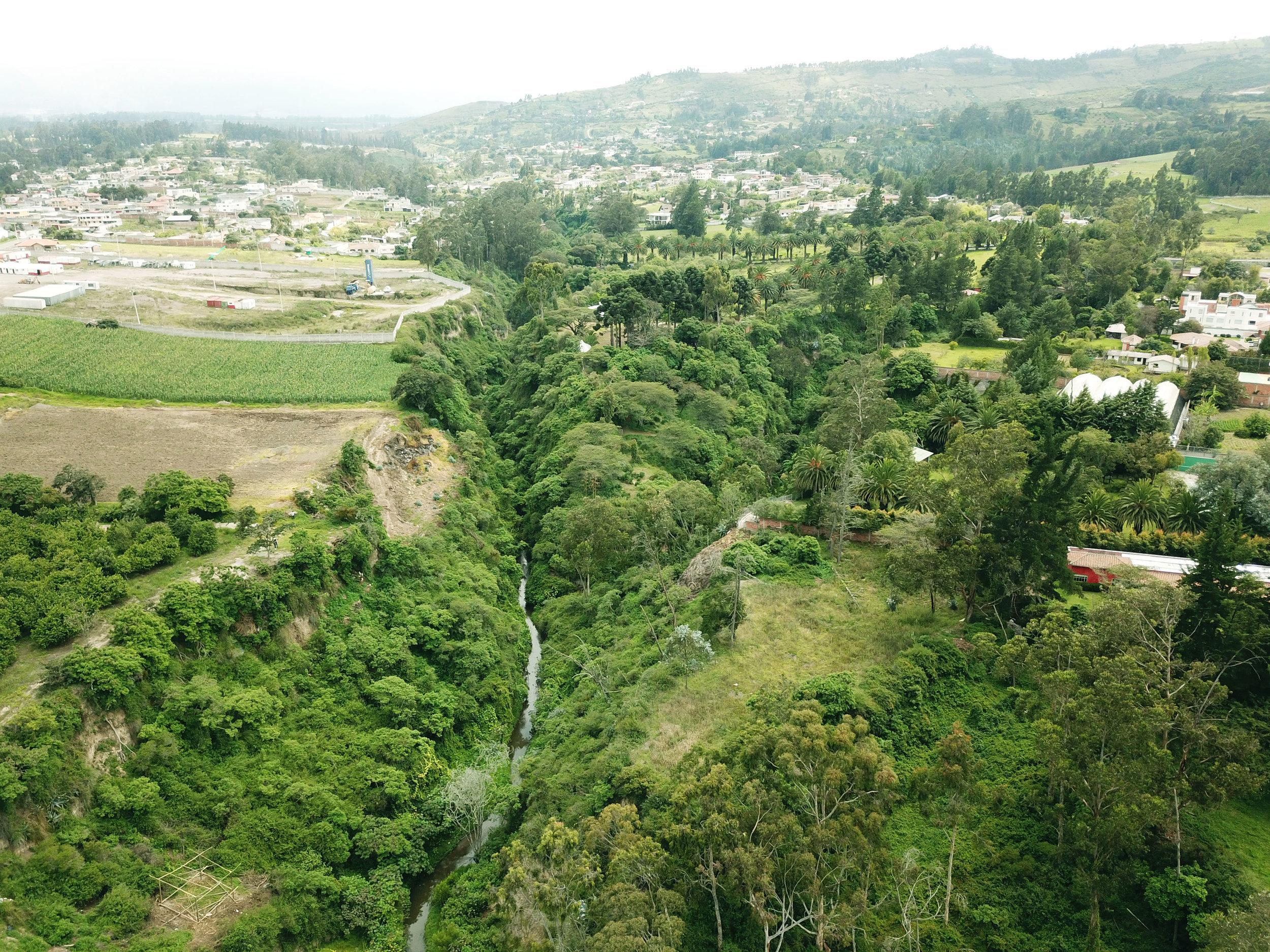 Quito, ciudad de riqueza ecológica. Fotografía: Renaturalizar