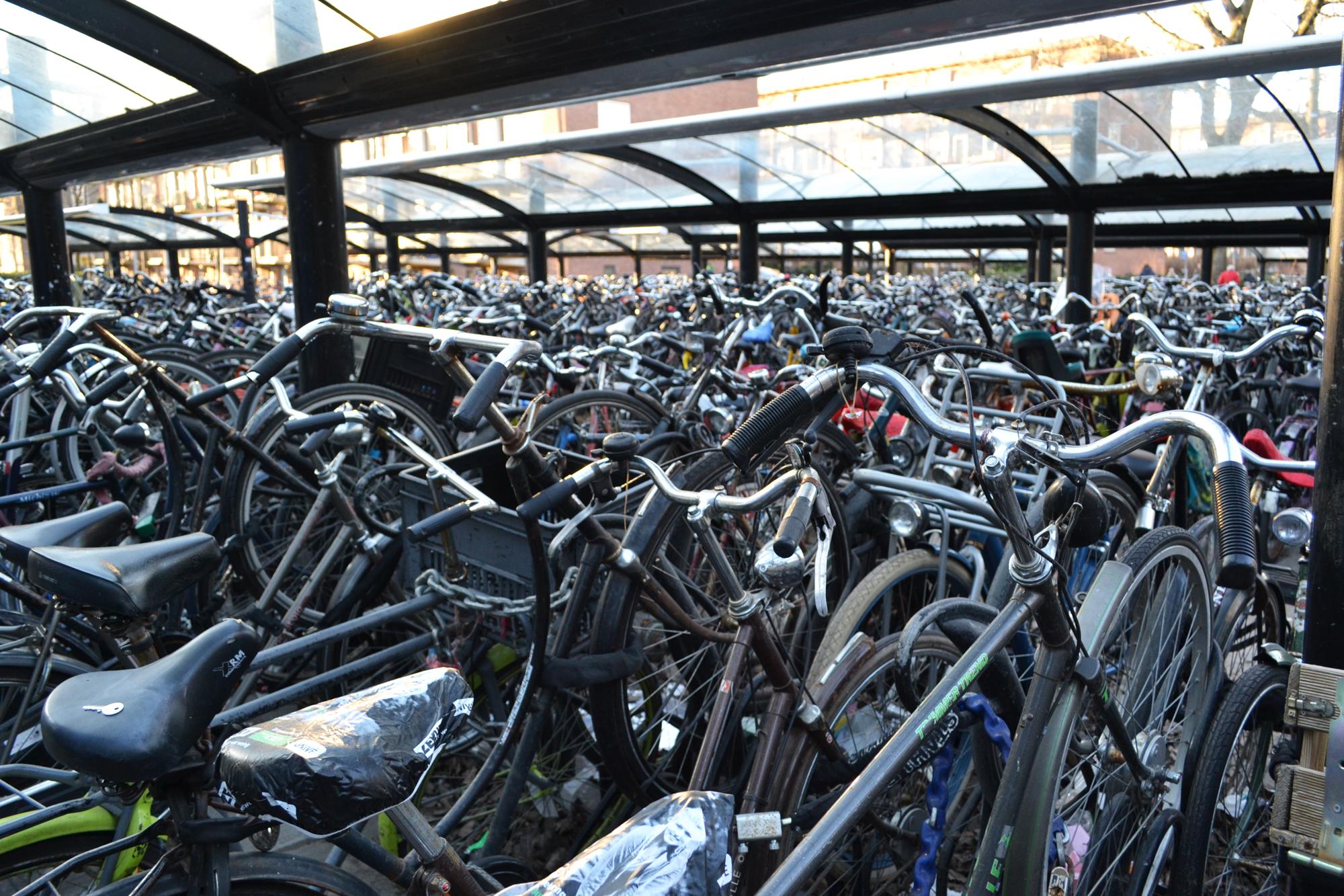 urbanbacklog-amsterdam-bicycle-city-2.jpg