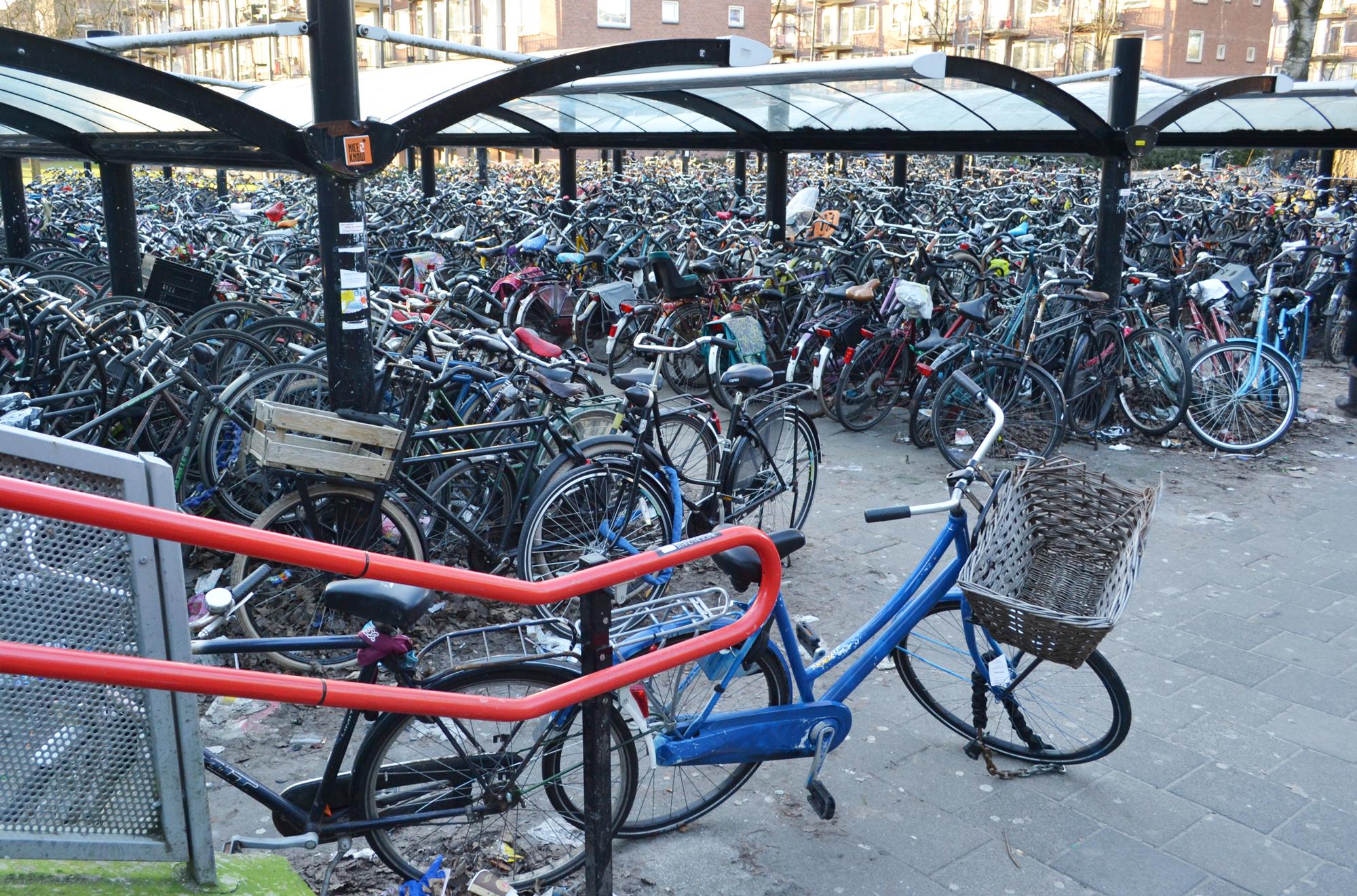 urbanbacklog-amsterdam-bicycle-city-1.jpg