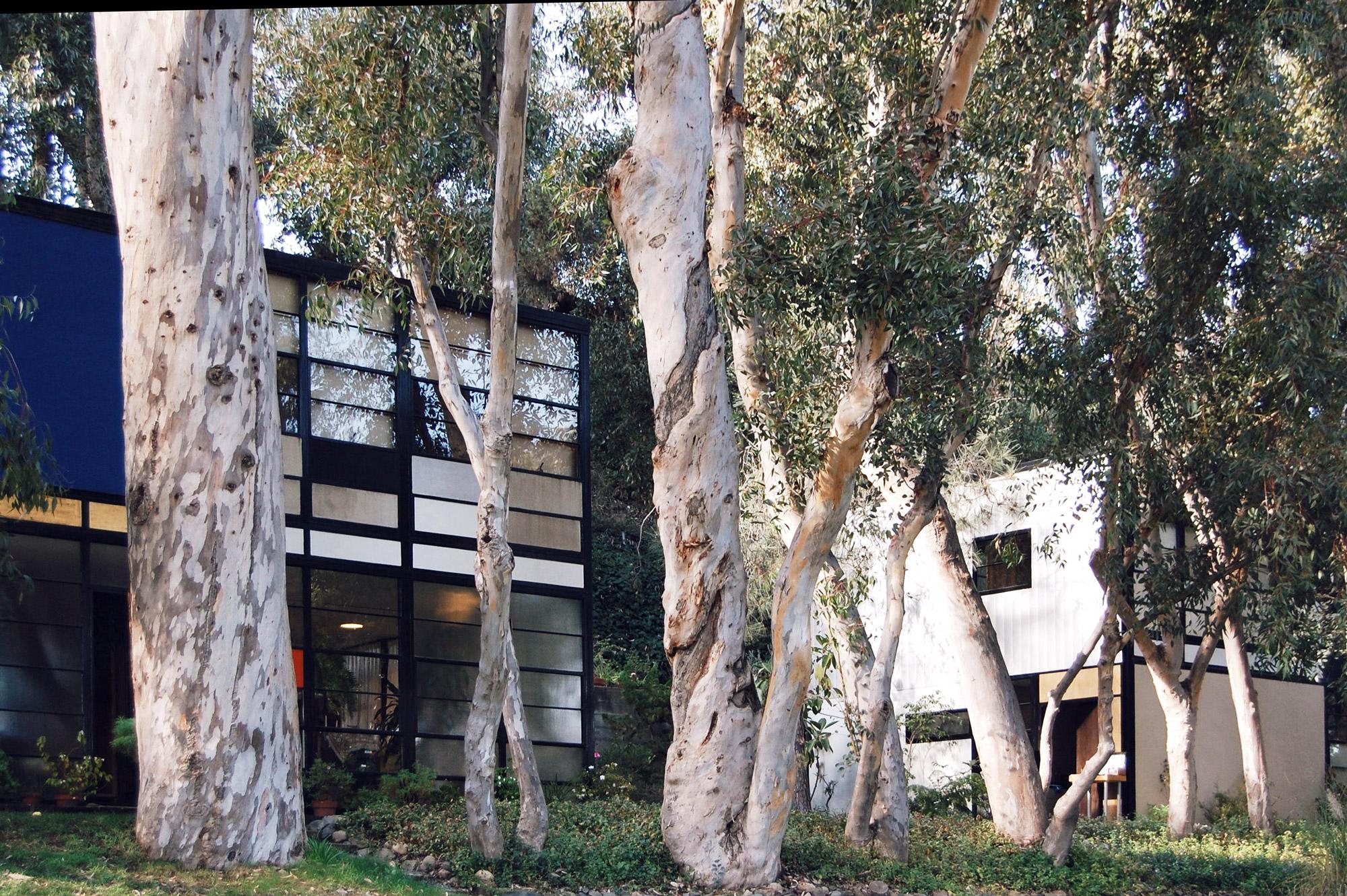 urbanbacklog-acanthus-los-angeles-eames-house-7.jpg