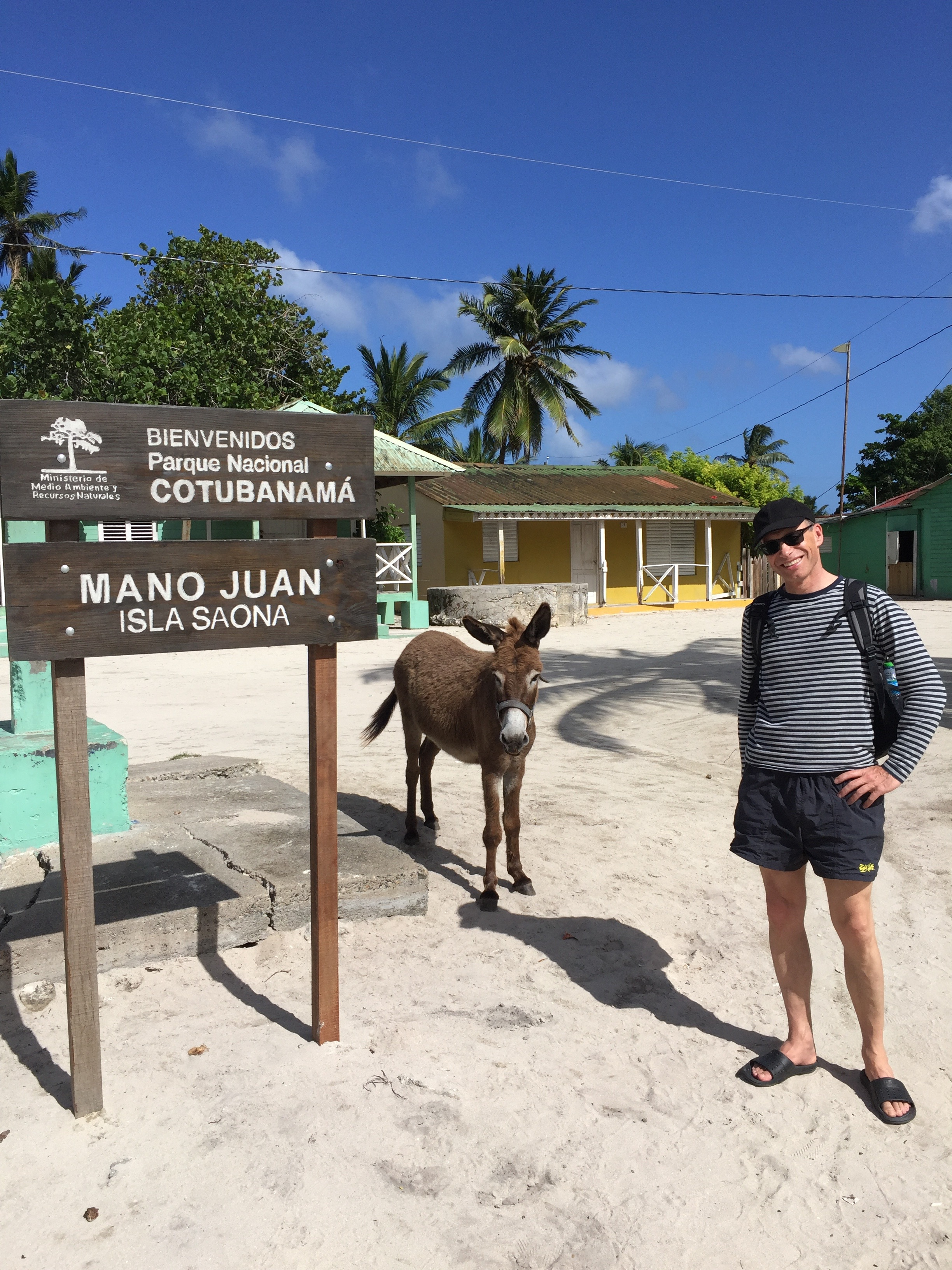 A dad and a donkey walk into a town...
